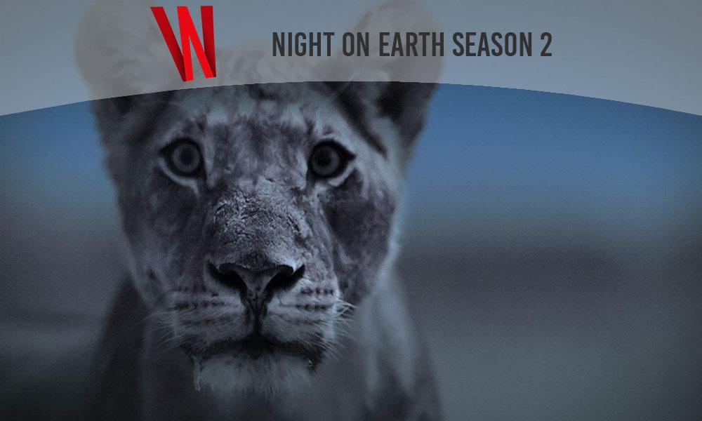 night on earth season 2 release date